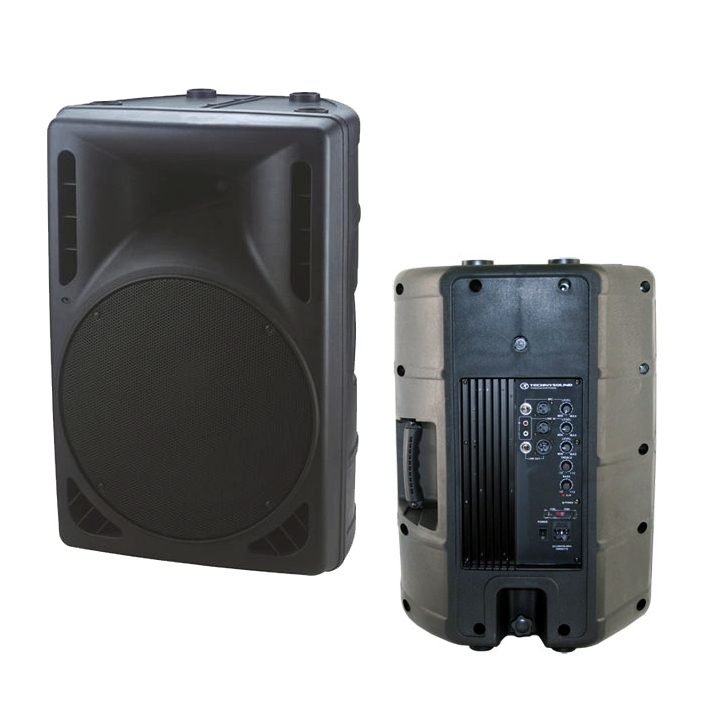 ENCEINTE MOULEE AMPLIFIEE 2 VOIES 31CM (pc)